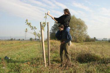 Sázení stromů v Hlušovicích